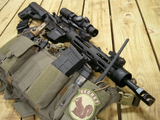 Rocke Guns 30.JPG